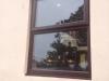 frame_fit_windows_03
